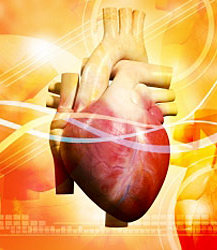 malattie cardiovascolari,sonno