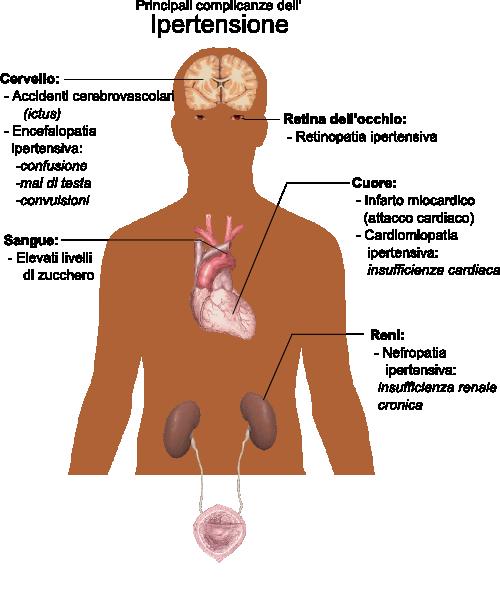 Ipertensione - Medimagazine