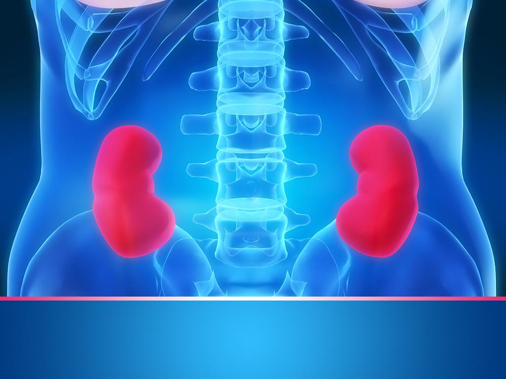 cancro del rene