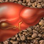 Il caffè può proteggere dalla cirrosi epatica