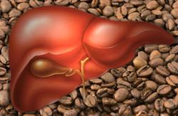 caffè,cirrosi epatia