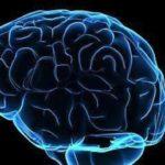 Un nuovo studio esamina le modifiche genetiche legate alla malattia di Parkinson