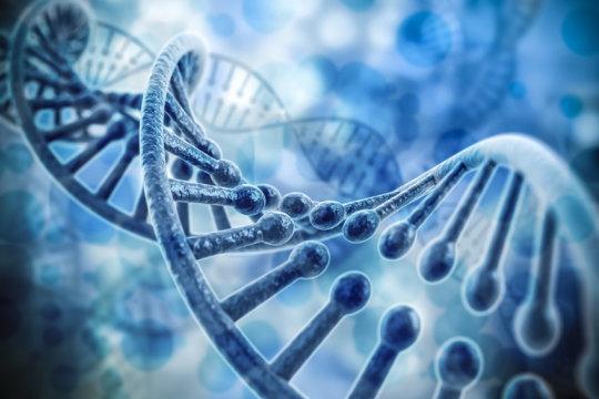 Il ricordo di un attacco di cuore è memorizzato nei nostri geni