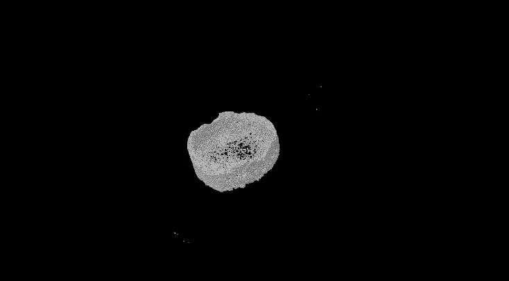 Una singola molecola induce le cellule staminali a rigenerare il tessuto osseo