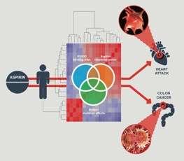 Scoperto il legame molecolare dietro il potere protettivo dell'aspirina