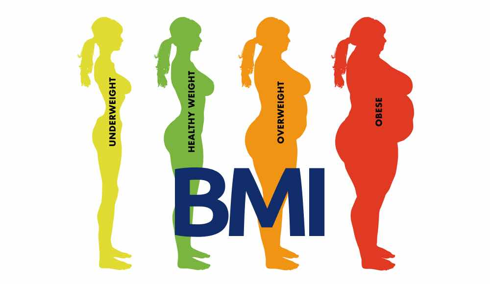 Rap1, un nuovo potenziale bersaglio per trattare l'obesità