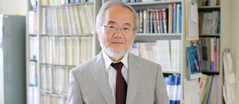 Il premio Nobel 2016 per la medicina assegnato al biologo molecolare Yoshinori Ohsumi