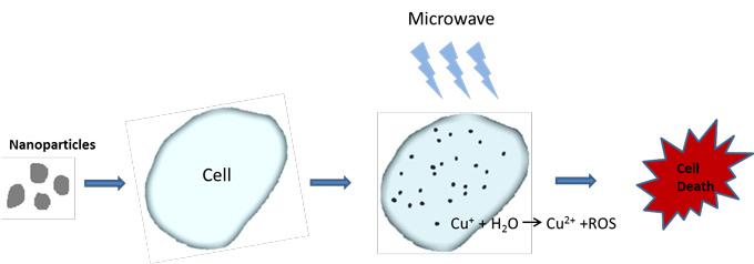 Nuovo trattamento con microonde per colpire i tumori profondi