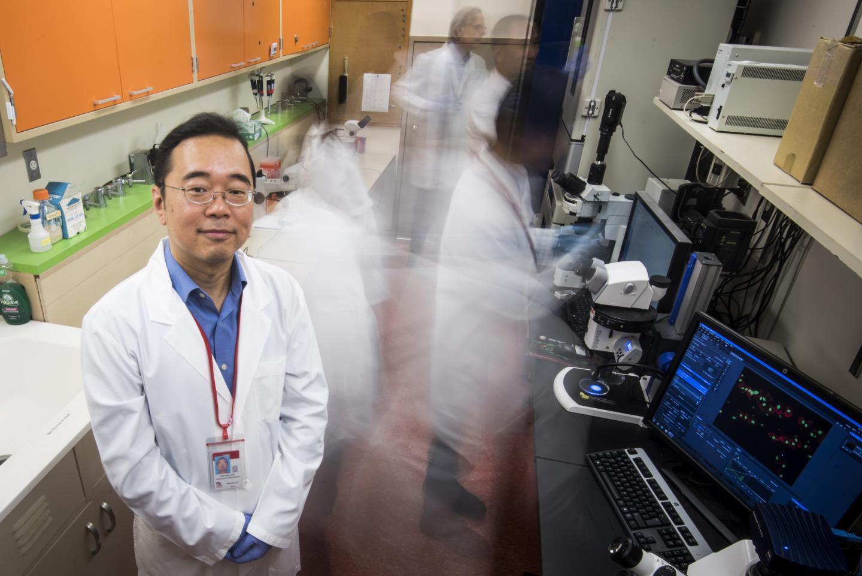Scoperto un gene che contribuisce allo sviluppo della malattia renale