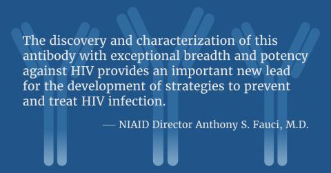Identificato un potente anticorpo che neutralizza quasi tutti i ceppi di HIV
