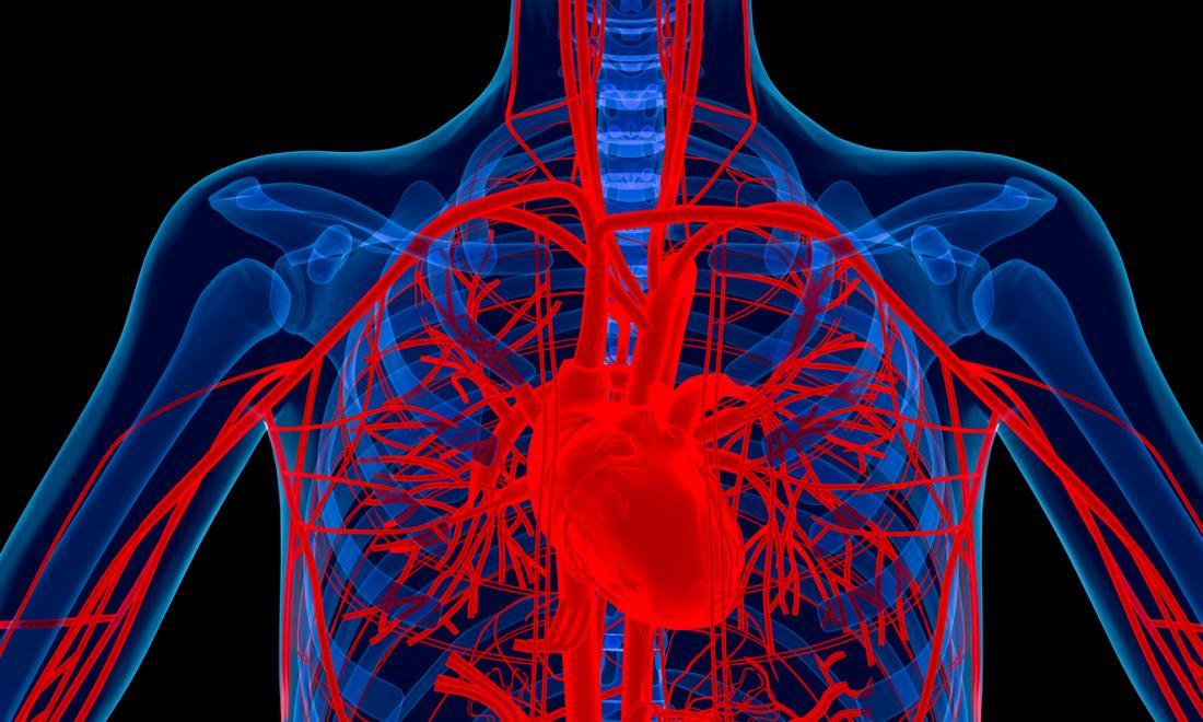 ferro,malattie cardiache