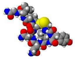 ossitocina,socialità