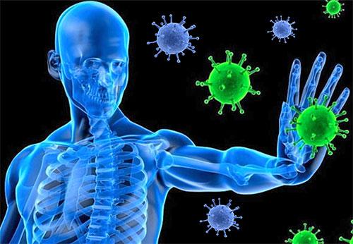 sistema immunitario