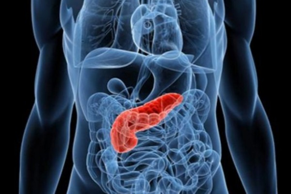 cancro del pancreas,microbioma