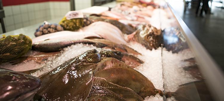 Malattie neurodegenerative,pesce
