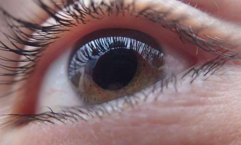 OpticSELINE