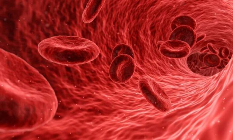 Un anticorpo di prima classe progettato per prevenire la coagulazione