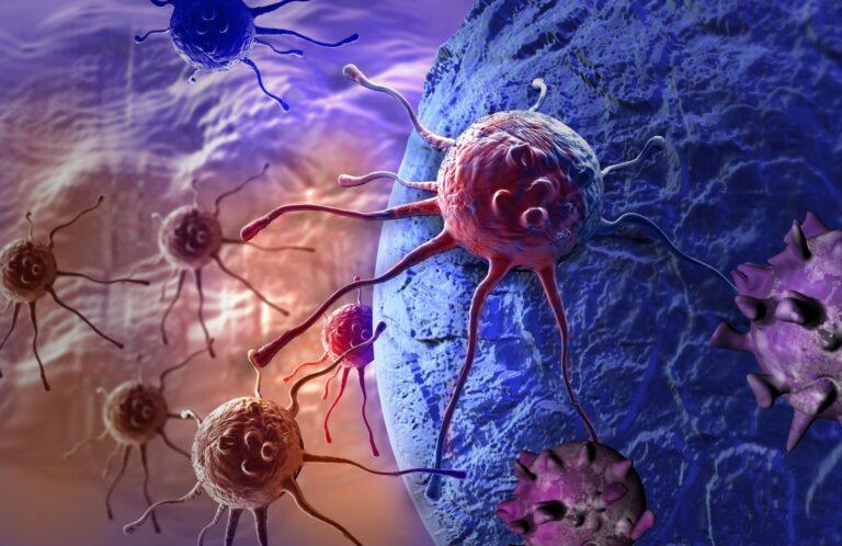 Interessante terapia del cancro completamente nuova: la rete della morte