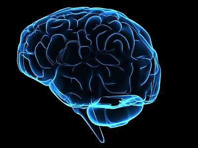 Come il cervello può ricablare se stesso dopo che ne è stato rimosso metà